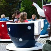 PFPT Teacup and Saucer Ride